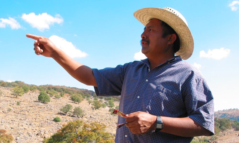 Jesús León Santos y el Centro de Desarrollo Integral Campesino de la Comunidad Mixteca